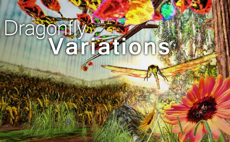 Dragonfly Variations